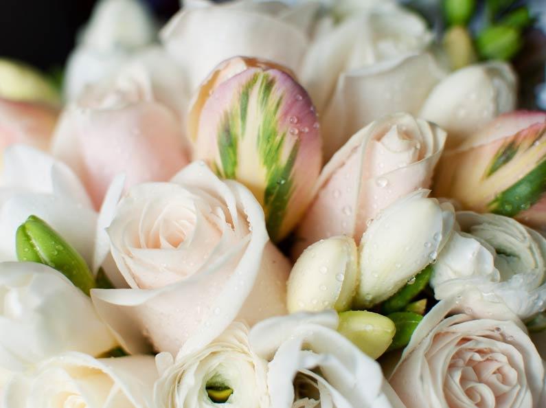 parrot tulip, rose and freesia wedding posy