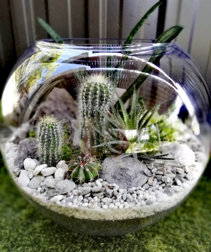 Giant Fishbowl Terrarium